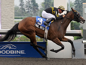 Final Mesa wins the 2010 My Dear Stakes.