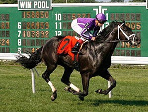 Finale wins the 2011 Continental Mile.