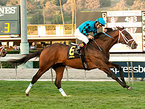 Finnegans Wake wins the 2015 San Gabriel Stakes.