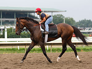 First Dude at Monmouth on July 29, 2010.