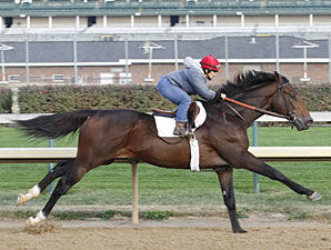 First Dude works at Churchill Downs on October 23, 2010.