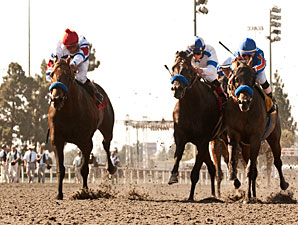 First Dude (left) wins the 2011 Hollywood Gold Cup.