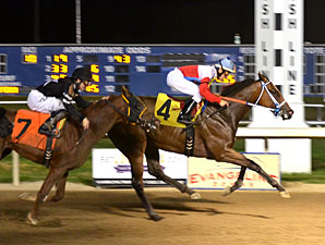 Fishin Frank wins the 2012 Shine Futurity.