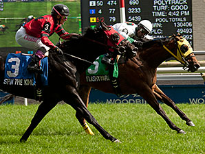 Flashy Margaritta wins the 2014 Bold Ruckus Stakes.