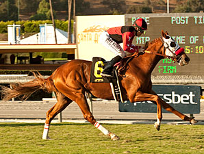 Flashy Ways wins the Surfer Girl Stakes.