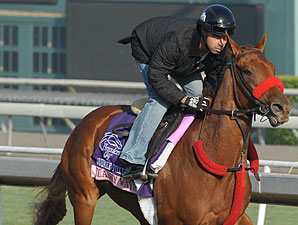 Flashy Ways - Breeders' Cup 2012
