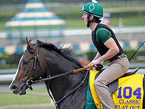 Flat Out preps for the Breeders' Cup.