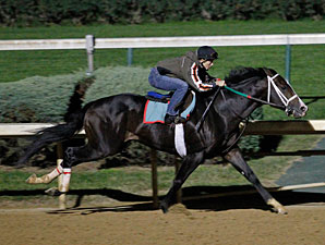 Flat Out works at Churchill Downs on October 15, 2011.