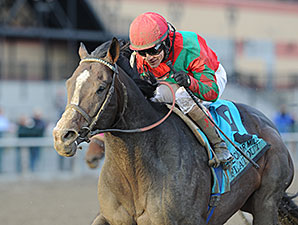 Flat Out wins the 2013 Cigar Mile.