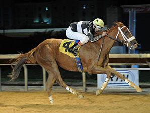 Flattering Bea wins the 2012 Miss Shenandoah Stakes.