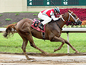 Flip Daddy wins the Hoover Stakes.