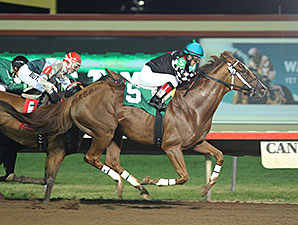 Flower Spell wins the 2014 Hoist Her Flag Stakes.