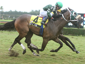 Fly By Phil wins the 2010 Tropical Park Derby.