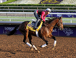 Footbridge - Breeders' Cup 2014