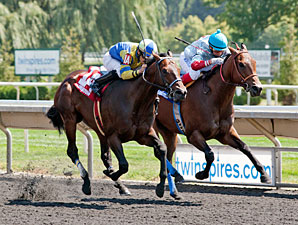Fordubai wins the 2013 Straight Line Stakes.