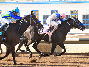 Forest Mouse wins the 2012 San Juan County Commissioners Handicap.