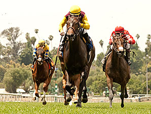 Forever Juanito wins the 2014 Desert Code Stakes.