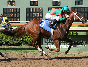 Fort Hood wins the 2010 Stardust Stakes.