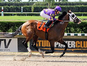 Fort Loudon wins the 2012 Unbridled Stakes.
