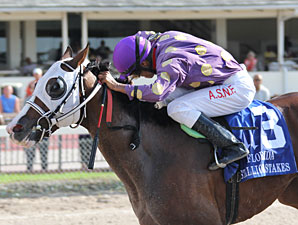 Fort Loudon wins the 2011 Affirmed Division of the FL Stallion Stakes.