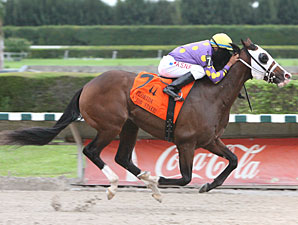 Fort Loudon wins the 2011 In Reality Division of the FL Stallion Stakes.