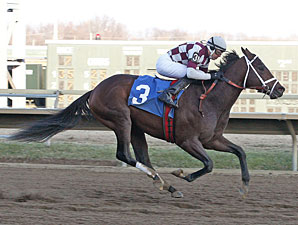 Forty Tales with John Bisono riding won the featured 7th race at Parx Racing on 1/5/13.