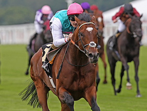 Frankel wins the Queen Anne Stakes at Royal Ascot.
