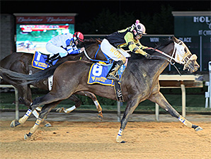 Fred High wins the West Virginia Breeders' Classic.