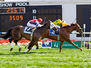 Free Fighter wins the 2009 Stars and Stripes.