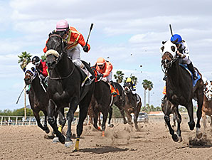 Frisky Ricky wins the 2014 Sandra Hall Grand Canyon Handicap.