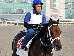 Furthest Land Dubai World Cup Week 2010.
