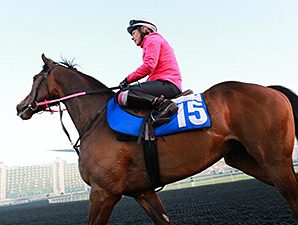 Gabrial at Meydan March 24.
