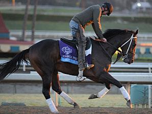 Gabriel Charles at Santa Anita 10/29/2012.