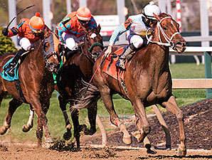 Galiana wins the 2015 Primonetta Stakes.