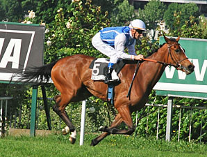 Galikova wins the 2011 Prix Cleopatre.
