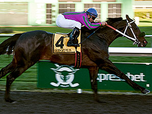 Gallant Son wins the 2013 Oakland Stakes.