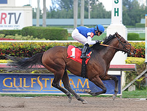 Gambler's Ghost - Maiden Win, January 1, 2014.