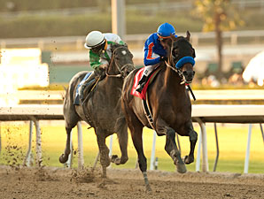 Game On Dude wins the 2012 Awesome Again.