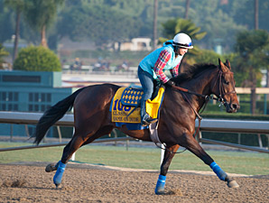 Game On Dude - 2013 Breeders' Cup, October 26, 2013.