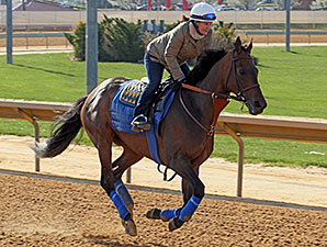 Game On Dude - Charles Town, April 17, 2014.