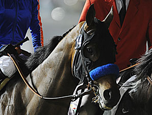 Game On Dude in the Dubai World Cup.