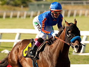Game On Dude wins the 2012 Hollywood Gold Cup.