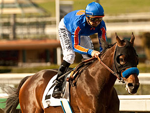 Game On Dude wins the 2013 San Antonio Stakes.