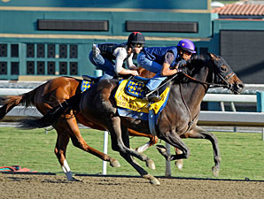 Game On Dude works at Santa Anita 10/28/2012.