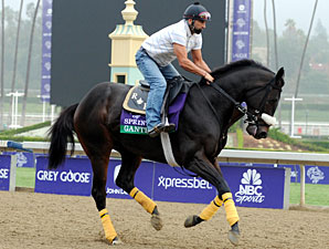 Gantry - Breeders' Cup 2012