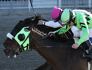 Gantry (pink cap) wins the 2011 Thanksgiving Handicap.