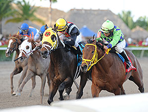 General a Rod wins the 2014 Gulfstream Park Derby.