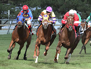 General Jack wins the 2013 Shakopee Juvenile Stakes.