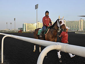 Gentildonna - Dubai March 27, 2013.
