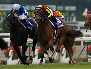 Gentildonna wins the Shuka Sho to fulfill the 4th female triple crown in Japan.